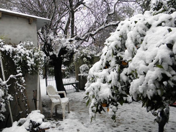 Nieve en Tres Arroyos 1/12