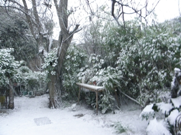 Nieve en Tres Arroyos 6/12