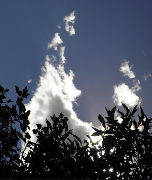Magica nube