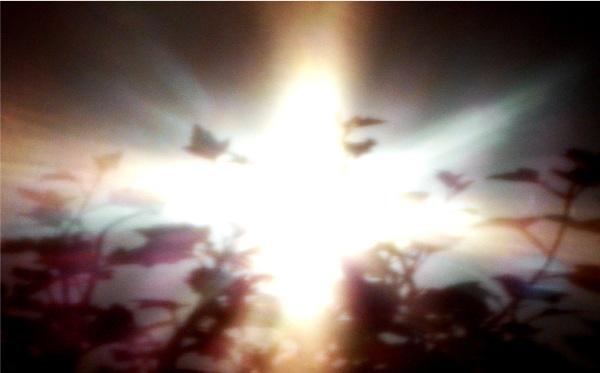 imagen solar