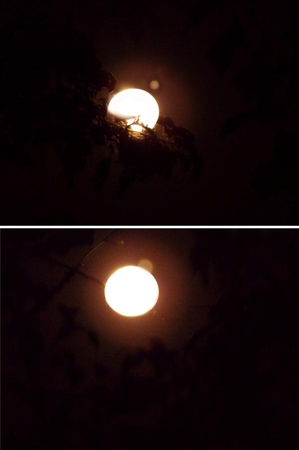 Enero 2013, La Luna cubrió a Júpiter
