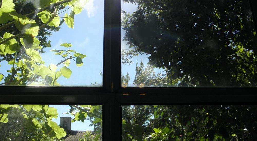 Detrás del vidrio