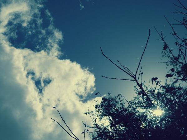 Maravilloso cielo