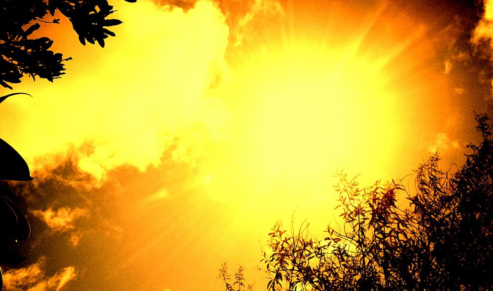 Sol Mágico V