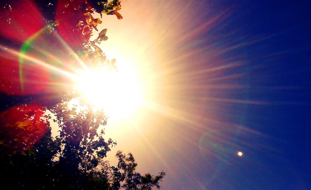 Regalo de Sol