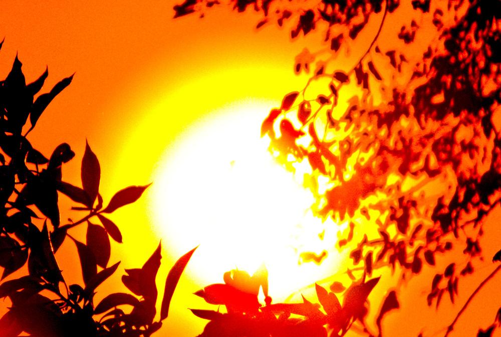 Magia de sol