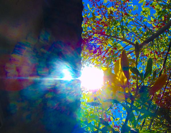 Fantasía Solar 2 - 5