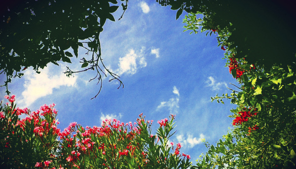 Vistas del cielo 1 - 6