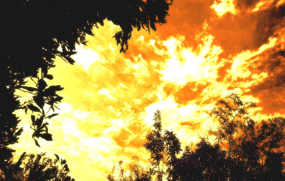Vistas del cielo 3 - 6