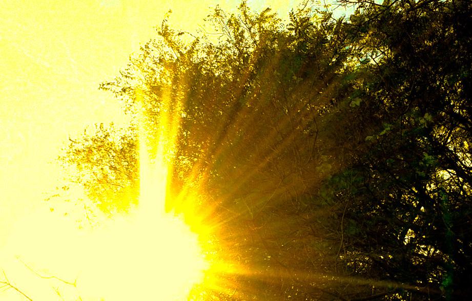 Reflejo de sol 2 - 3