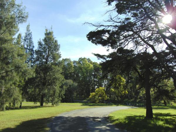 Parque Angel L. Cabañas 5 - 12