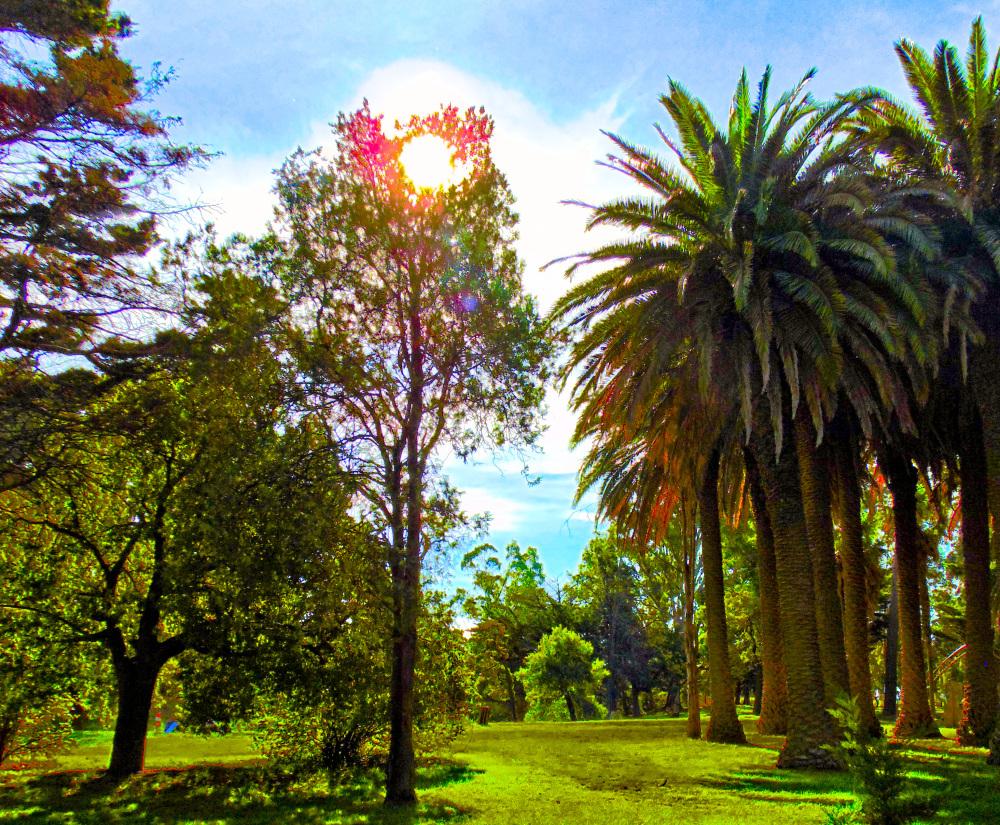 Parque Angel L. Cabañas 12 - 12