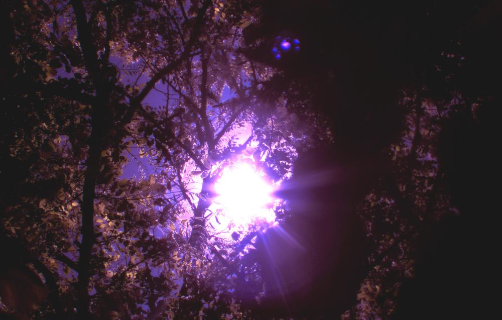 Vista de cielo 2 - 6