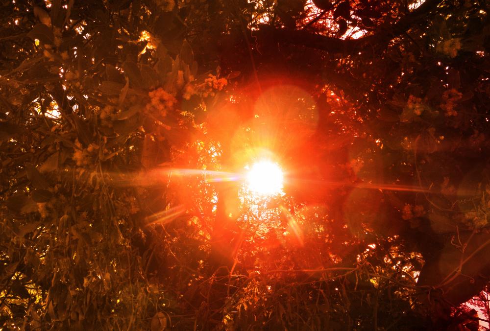 Luz solar 3 - 6
