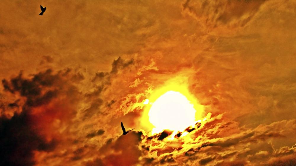 Puesta de sol 2 - 2