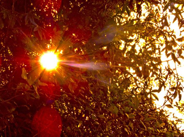 Luz solar 2 - 2