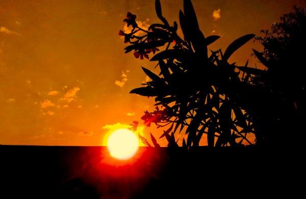 Puesta de sol 6 - 7