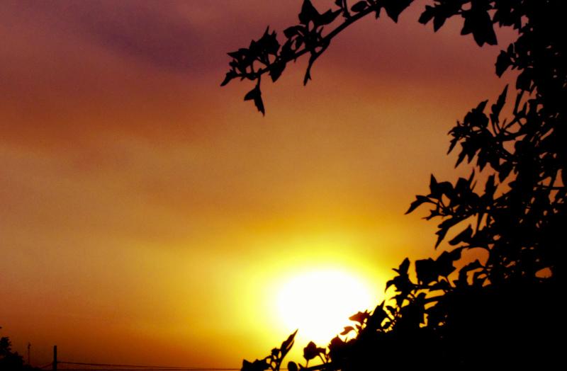 Puesta de sol 7 - 7