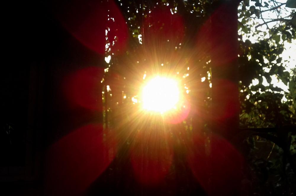 Magico Sol