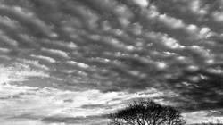 Nubes cirrocúmulos