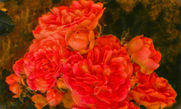 Flores 3 - 3