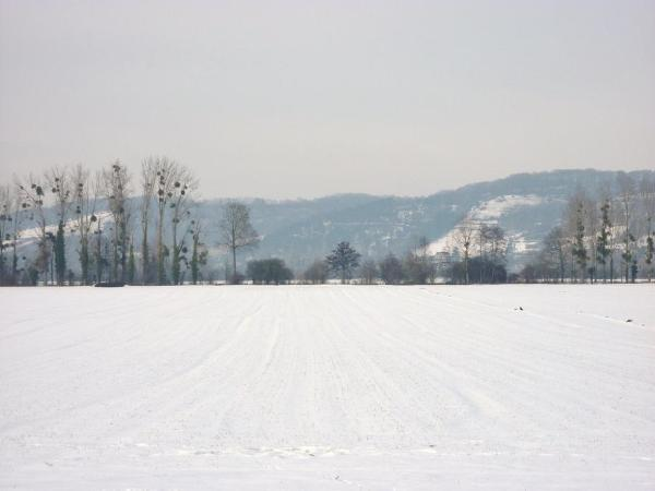 Campagne immaculée