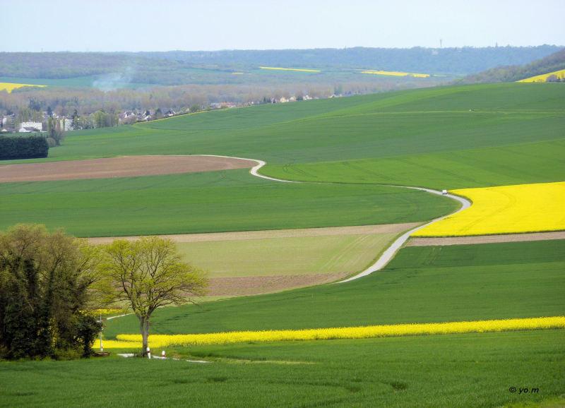 Le Vexin Normand  # 1