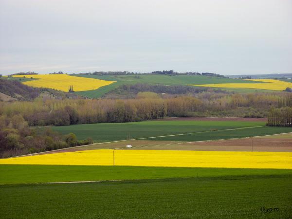 Le Vexin Normand  # 2
