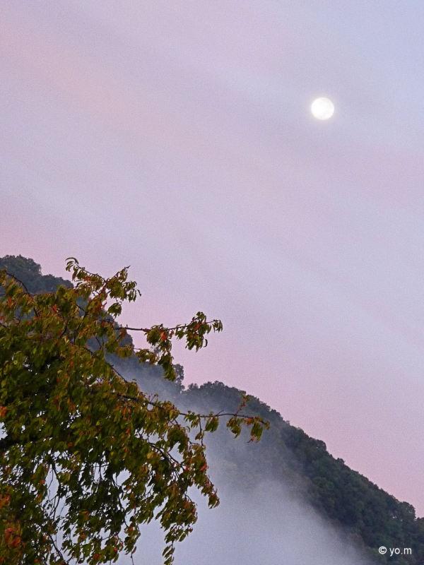 La lune a rendez-vous avec le soleil...