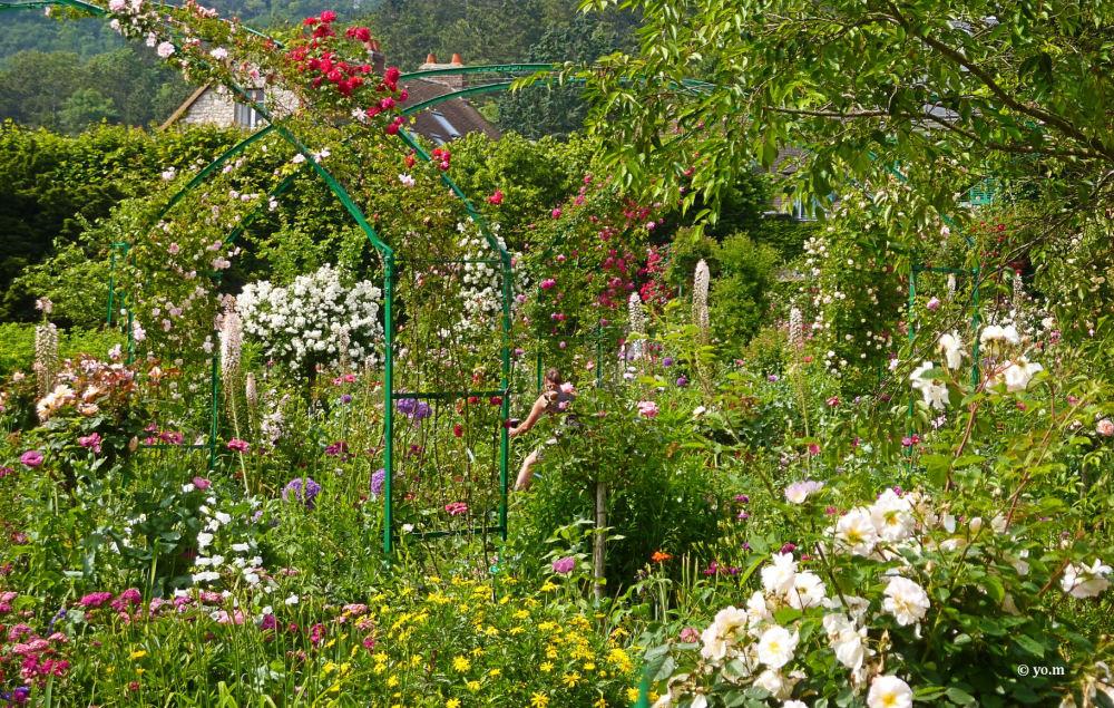 La jardinière  # 2