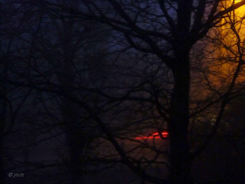 L'aube d'un jour sinistre