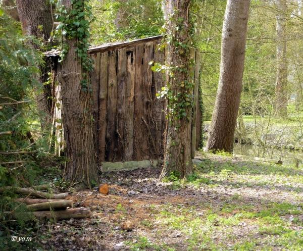 Cabane de jardin  3/4 ...