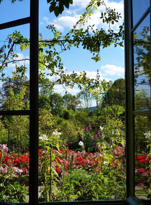 Vue sur le jardin fleuri