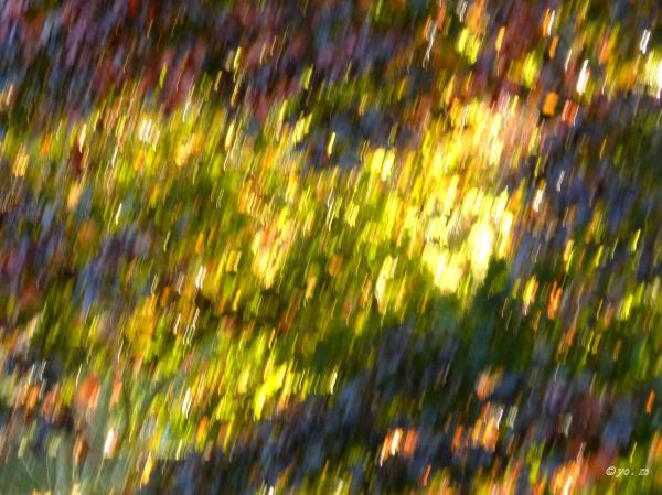 Couleurs d'automne  # 3