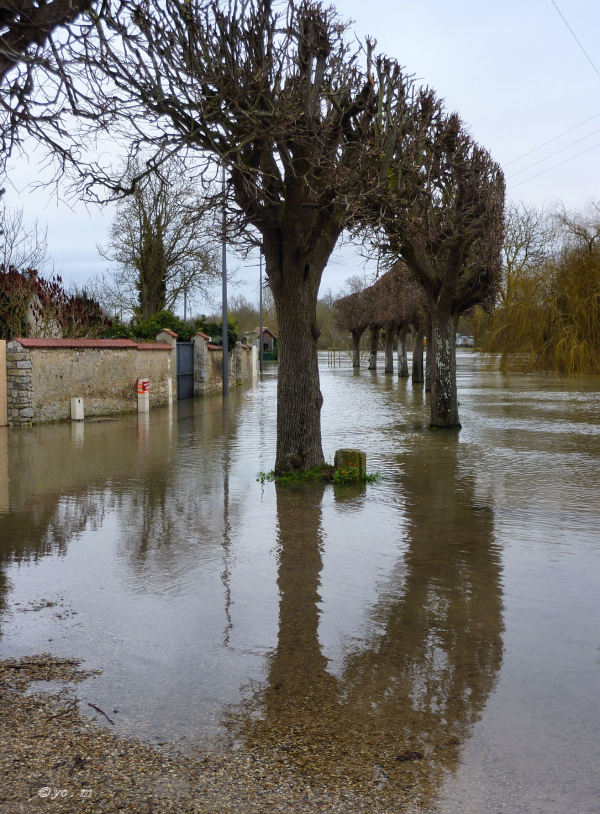 La Seine prend ses aises