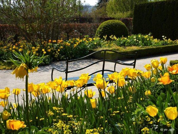 Dans dix jours le printemps !