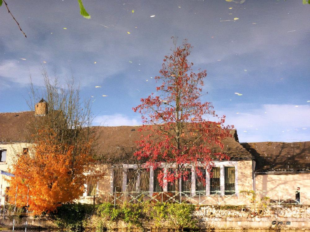 Derniers reflets d'automne  # 2