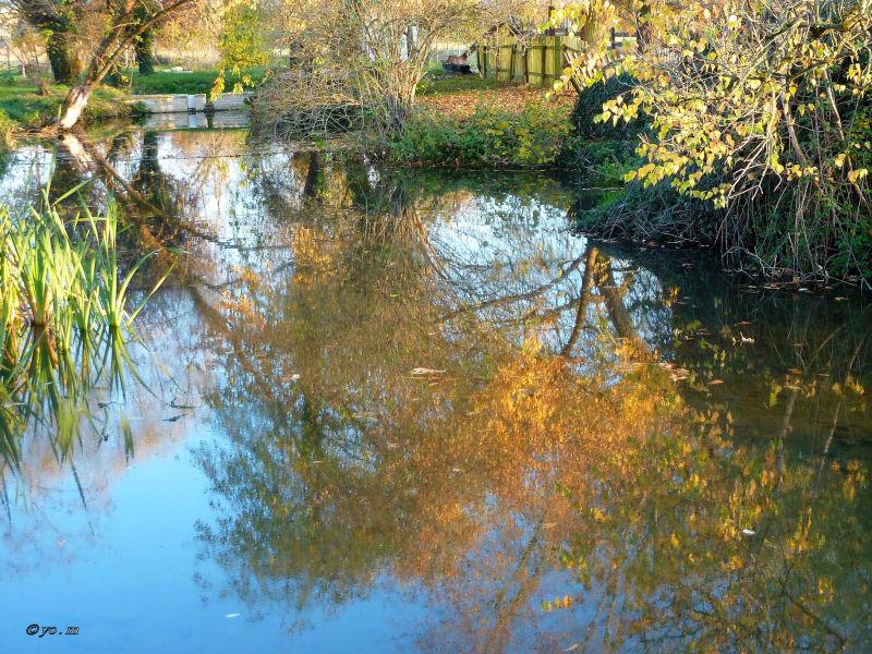 Derniers reflets d'automne  # 3