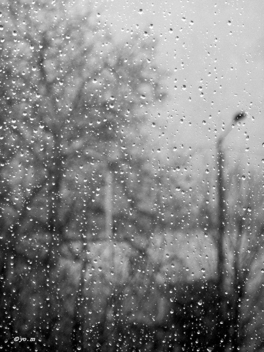 Pluie ...
