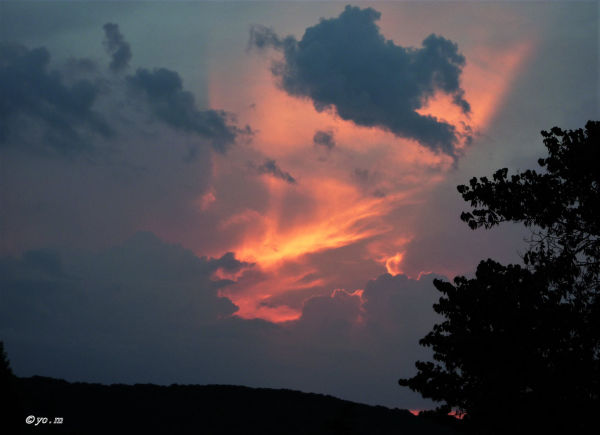 Le nuage éléphant