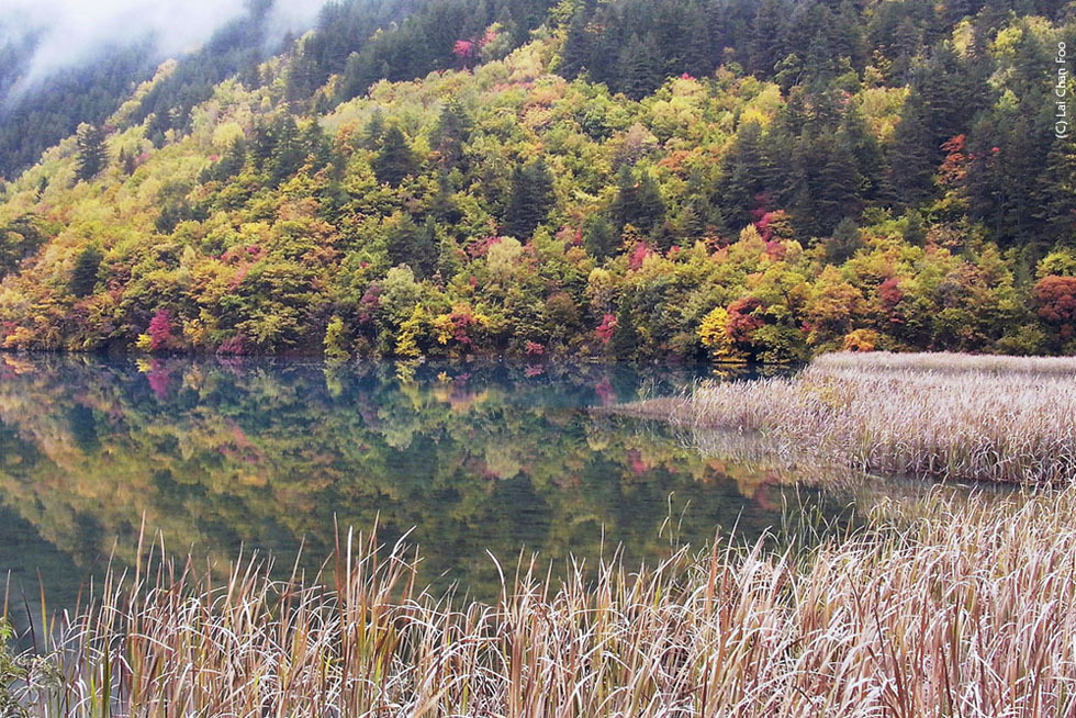 Autumn in Jiu Zhai Gou, China