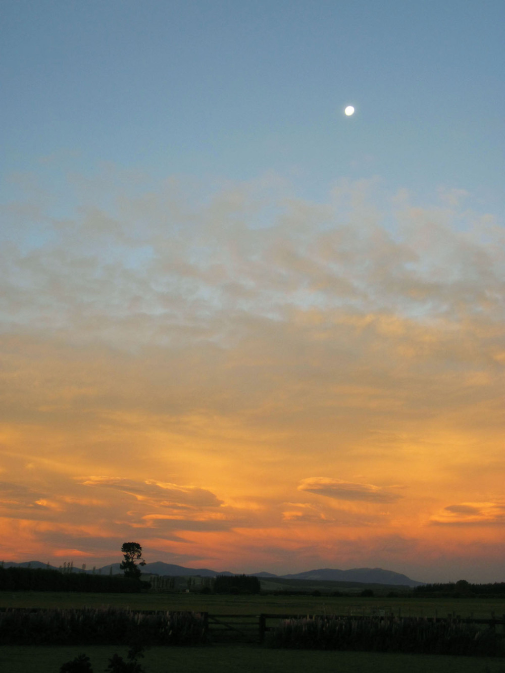 Sunset on the farm, Canterbury, New Zealand