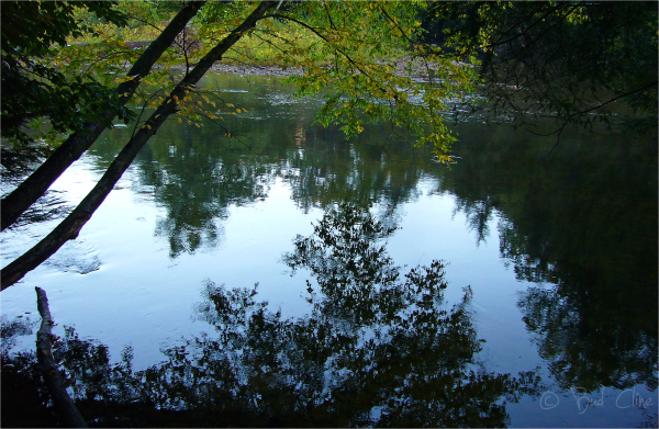 Reflections on the Sharvers Fork