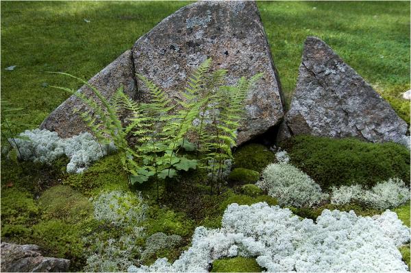 garden microenvironment