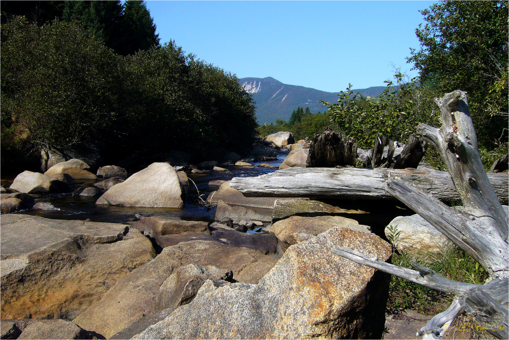 Near the Appalachian Trail in Baxter St. Park
