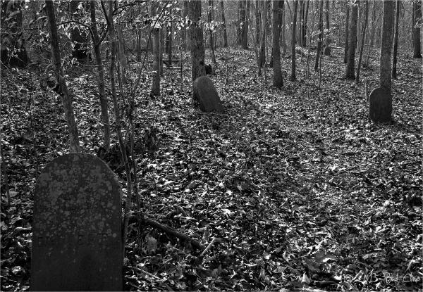 Seneca Sandstone Mill Worker's Graveyard