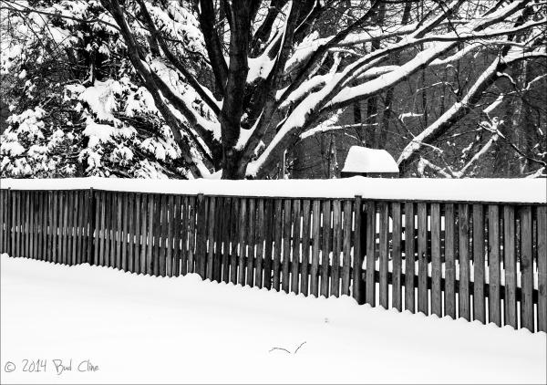 Feb 2014 Snow Storm