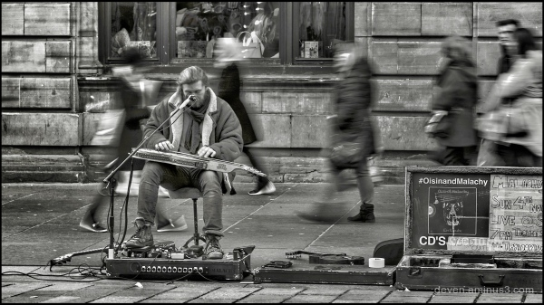 Musician Performing on the Streets