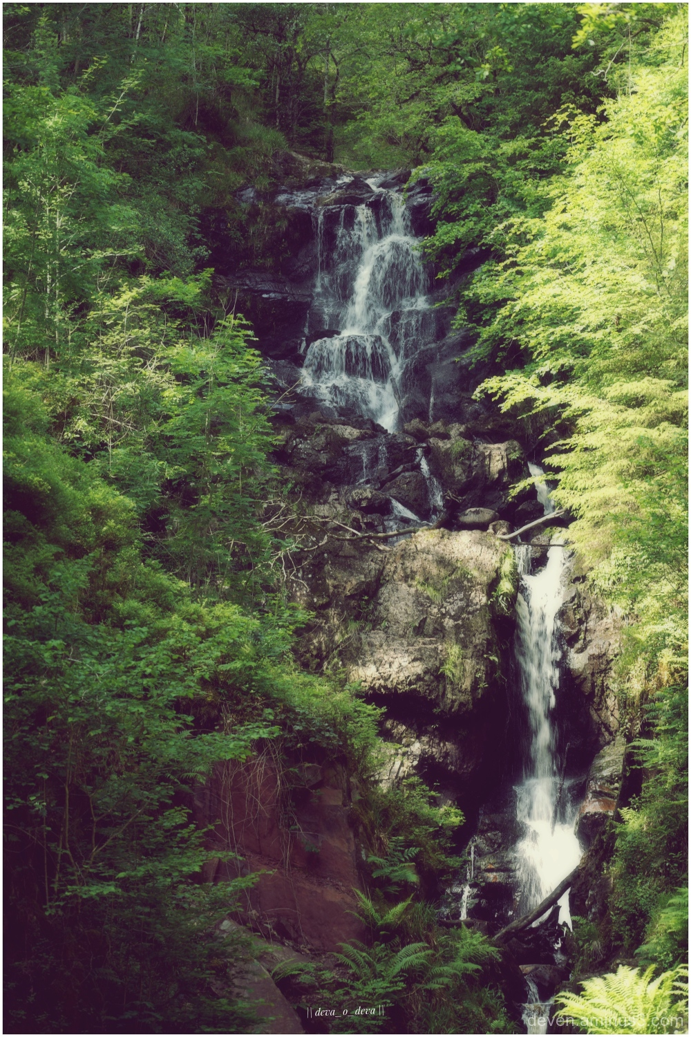 Waterfall in Queen Elizabeth Forest Park