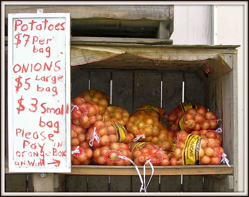 Onions For Sale